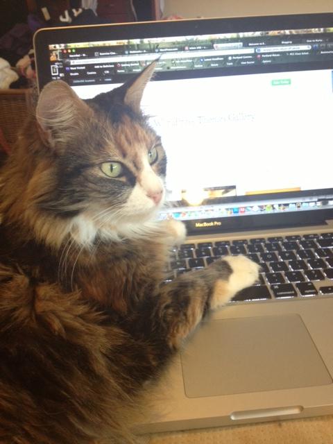 Margot Blogs